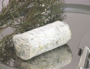 Pont Yeu, goat milk cheese available to sell