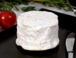 Petit Morin, cow milk cheese available to sell