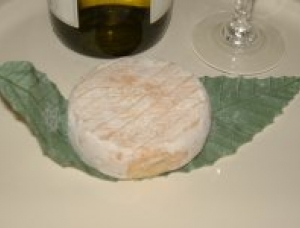 Cabri de Parthenay, goat milk cheese available to sell