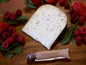 Gouda with cumin, cow milk cheese available to sell
