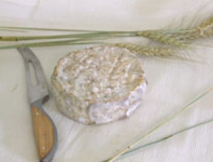 Fiumorbù, ewe milk cheese available to sell