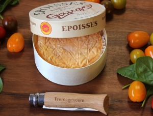 Epoisses de Bourgogne, cow milk cheese available to sell