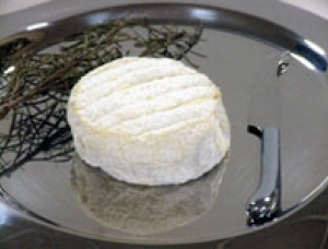 Saulzais, ewe milk cheese available to sell