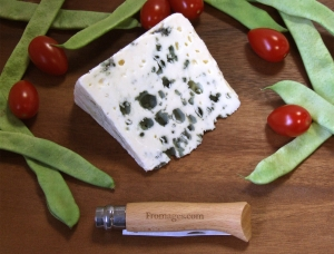 Roquefort, ewe milk cheese available to sell