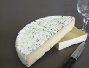 Brie with Pepper, cow milk cheese available to sell