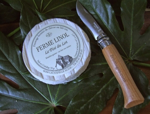 Pisé du Lot, goat milk cheese available to sell