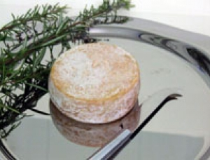 Chevrotin des Aravis, goat milk cheese available to sell