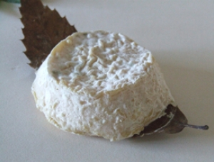 Mothais sur Feuille Organic, goat milk cheese available to sell