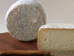 Fior di Pecura, ewe milk cheese available to sell
