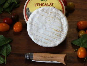 L'Encalat, ewe milk cheese available to sell