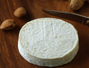 Piastrellou, cow milk cheese available to sell