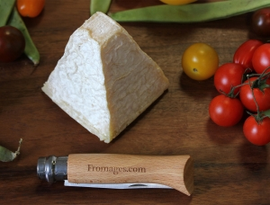 Pouligny Saint Pierre, goat milk cheese available to sell