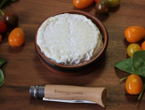 Saint Felicien, cow milk cheese available to sell