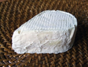Goutte du Limousin, goat milk cheese available to sell