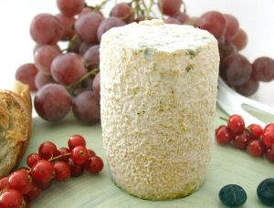 Charolais, goat milk cheese available to sell