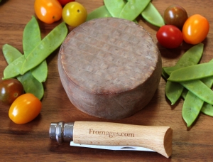 Echourgnac aux Noix, cow milk cheese available to sell