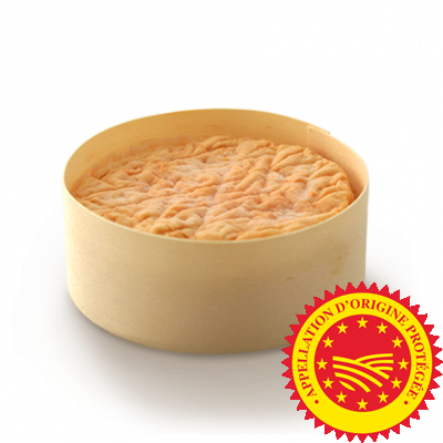Epoisses de Bourgogne PDO, cow milk cheese available to sell