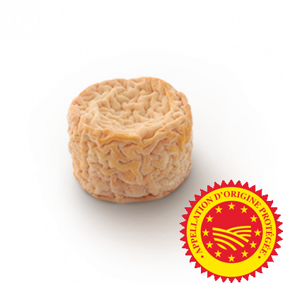 Langres PDO, cow milk cheese available to sell
