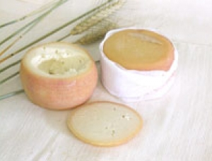 Queijo do Pastor, ewe milk cheese available to sell
