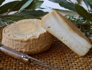 Bel Fiuritu, ewe milk cheese available to sell
