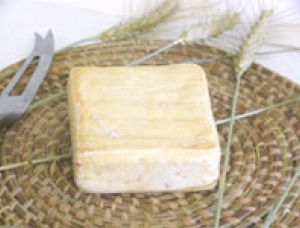 Carré du Vinage, cow milk cheese available to sell