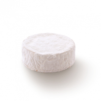 Coulommiers, cow milk cheese available to sell