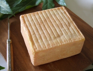Maroilles , cow milk cheese available to sell