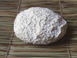 Galletout, fromage au lait de chevre disponible à la vente