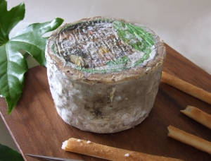 Tomme de Yenne , cow milk cheese available to sell