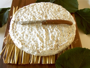 Brie de Melun , cow milk cheese available to sell