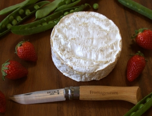 Camembert, cow milk cheese available to sell
