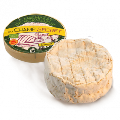Organic camembert, cow milk cheese available to sell