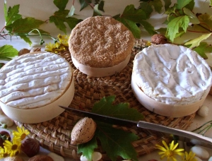 Trio de Camembert, fromage au lait de vache disponible à la vente