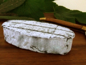 Délice du Poitou, goat milk cheese available to sell
