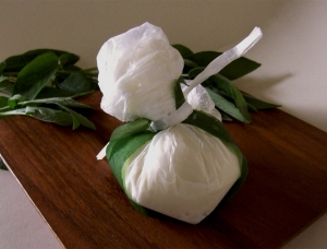Burrata della Puglia, cow milk cheese available to sell