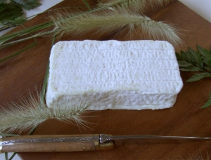 Pave du Larzac, ewe milk cheese available to sell
