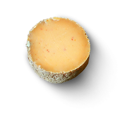 La Basquaise, ewe milk cheese available to sell