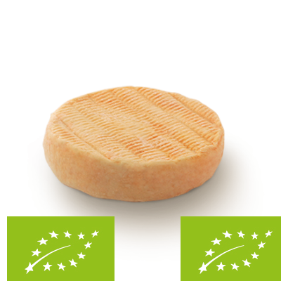Munster PDO - organic, cow milk cheese available to sell