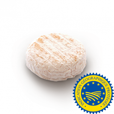 Saint Marcellin, cow milk cheese available to sell