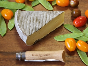 Saint Nectaire PDO 400g, cow milk cheese available to sell