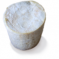 Fourme d'Ambert Entire wheel, cow milk cheese