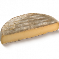 Saint Nectaire PDO 1/2 wheel, cow milk cheese