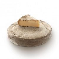 Saint Nectaire, cow milk cheese