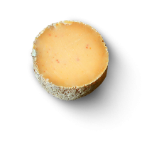 La Basquaise 1/2, ewe milk cheese