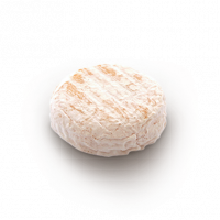 St Marcellin, cow milk cheese