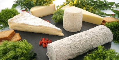 French gourmet cheeseboard
